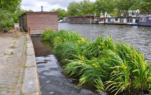 Aqua-Flora® Floatlands